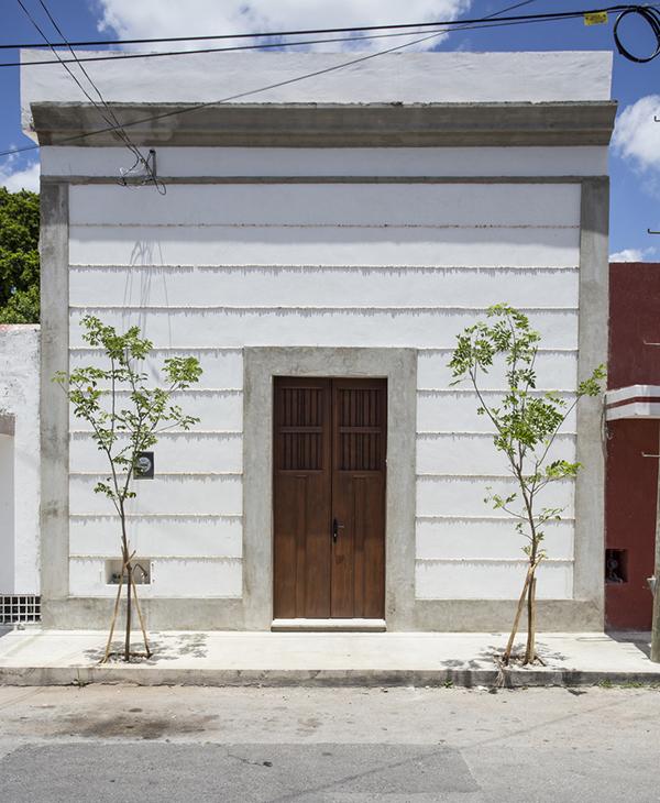 خانه درخت لیمو